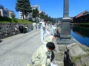 小樽運河草むしり02